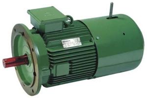 Standard motors high efficiency energy efficient motors for Motors used in cranes